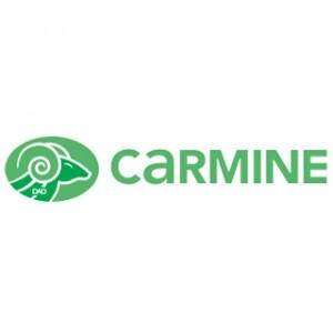 carmine-serrures-cylindres-serrurier-bruxelles